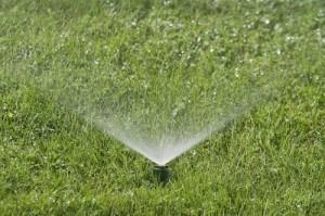 Morrisville Nc Sprinkler Amp Irrigation Experts Evergreen